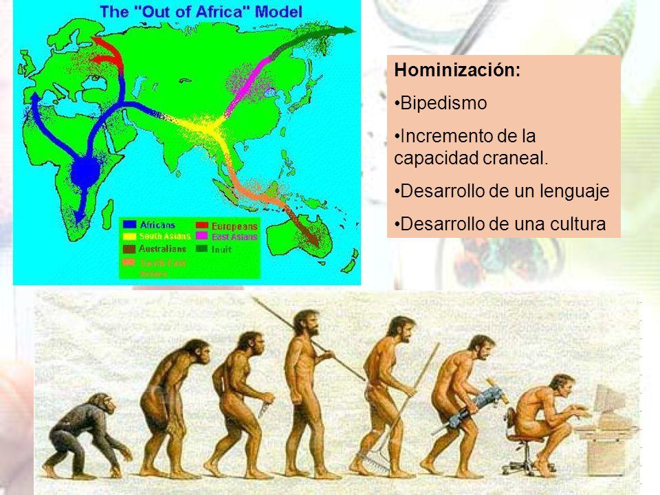 Homo sapiens desarrolló el simbolismo abstracto, éramos ya nosotros.