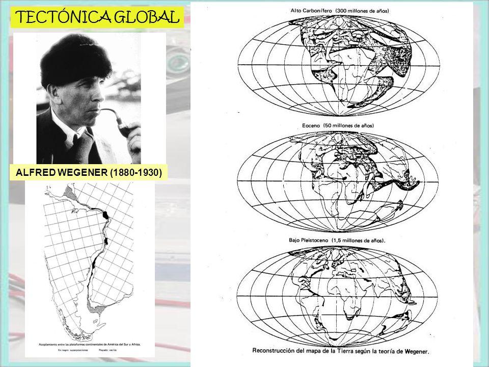 TECTÓNICA GLOBAL ALFRED WEGENER (1880-1930)