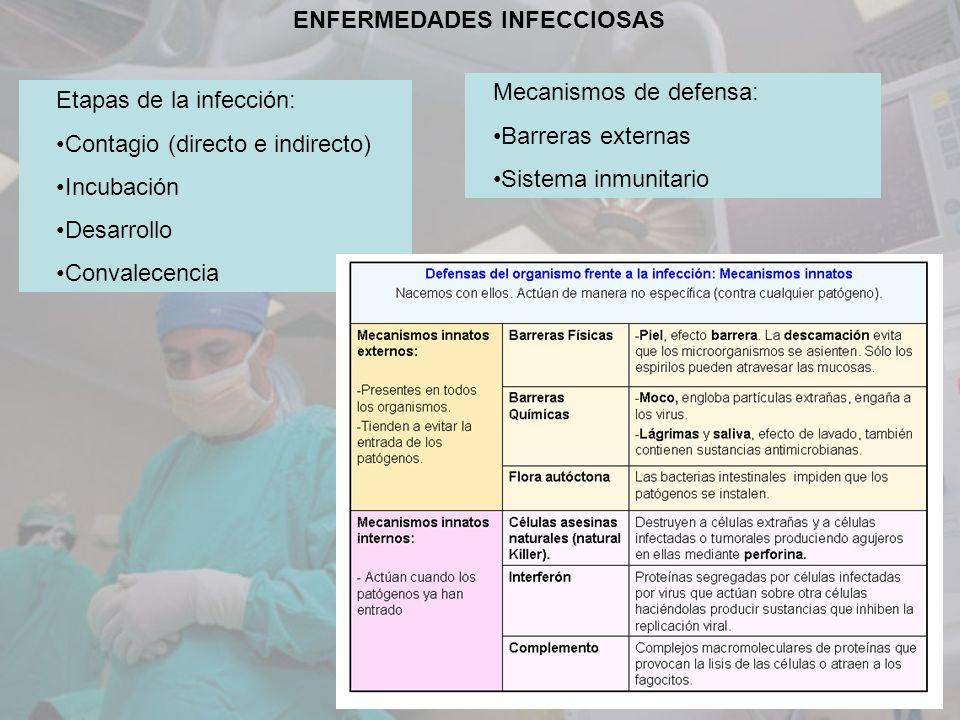 ENFERMEDADES INFECCIOSAS Etapas de la infección: Contagio (directo e indirecto) Incubación Desarrollo Convalecencia Mecanismos de defensa: Barreras ex