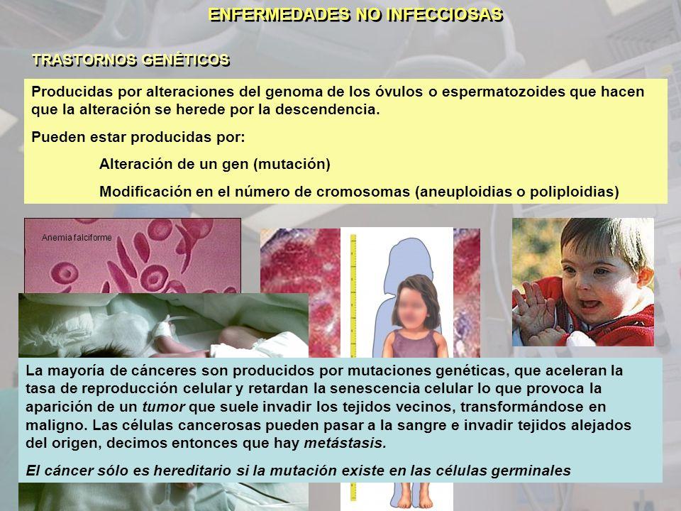 ENFERMEDADES NO INFECCIOSAS TRASTORNOS GENÉTICOS Producidas por alteraciones del genoma de los óvulos o espermatozoides que hacen que la alteración se