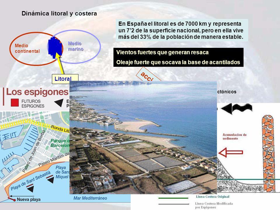 Dinámica litoral y costera Medio continental Medio marino Litoral En España el litoral es de 7000 km y representa un 72 de la superficie nacional, per