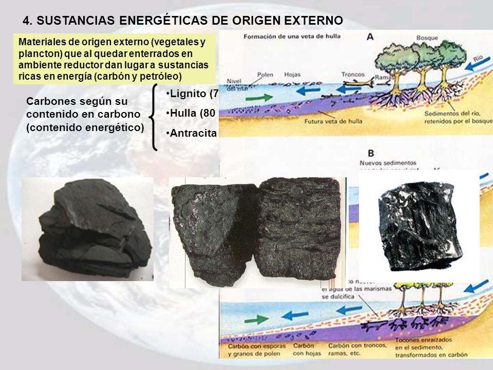 4. SUSTANCIAS ENERGÉTICAS DE ORIGEN EXTERNO Materiales de origen externo (vegetales y plancton) que al quedar enterrados en ambiente reductor dan luga