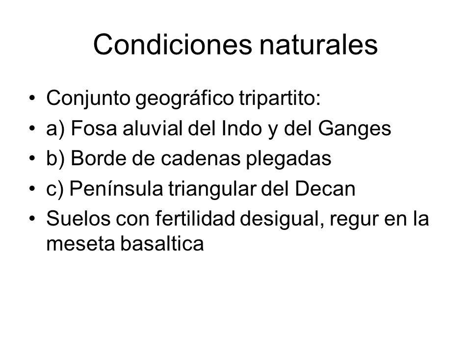 Condiciones naturales Conjunto geográfico tripartito: a) Fosa aluvial del Indo y del Ganges b) Borde de cadenas plegadas c) Península triangular del D