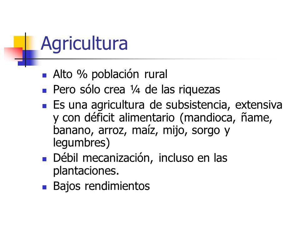 Agricultura Alto % población rural Pero sólo crea ¼ de las riquezas Es una agricultura de subsistencia, extensiva y con déficit alimentario (mandioca,