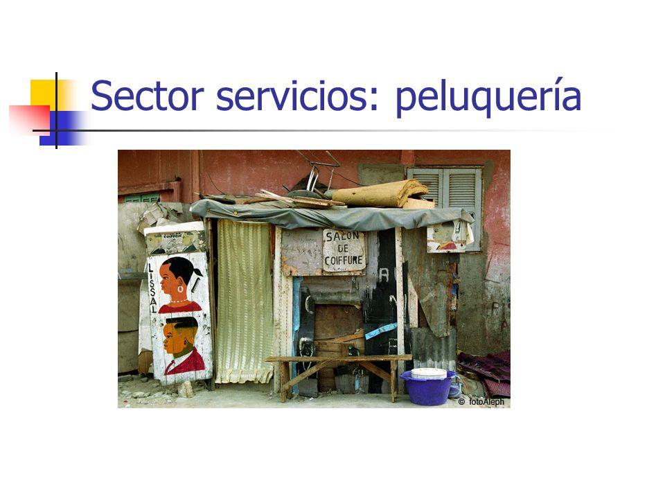Sector servicios: peluquería