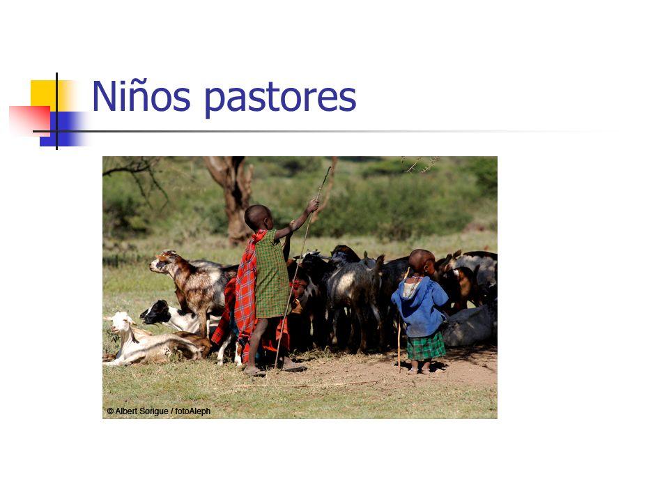 Niños pastores
