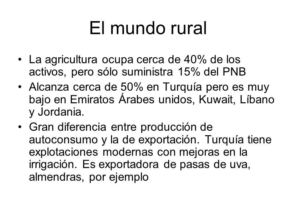 El mundo rural La agricultura ocupa cerca de 40% de los activos, pero sólo suministra 15% del PNB Alcanza cerca de 50% en Turquía pero es muy bajo en