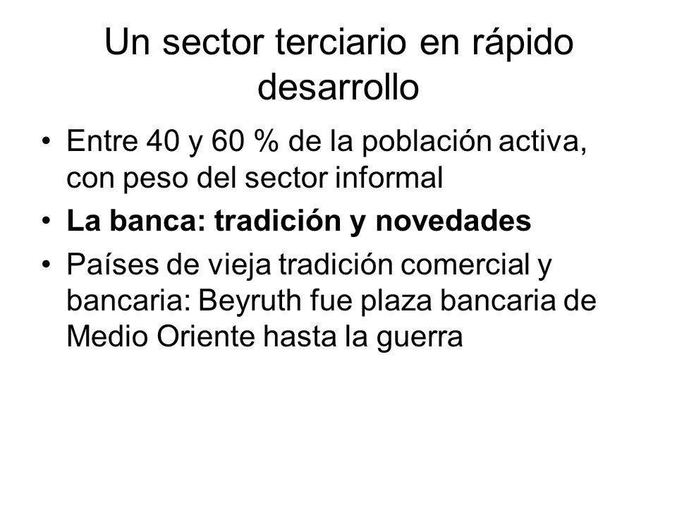 Un sector terciario en rápido desarrollo Entre 40 y 60 % de la población activa, con peso del sector informal La banca: tradición y novedades Países d
