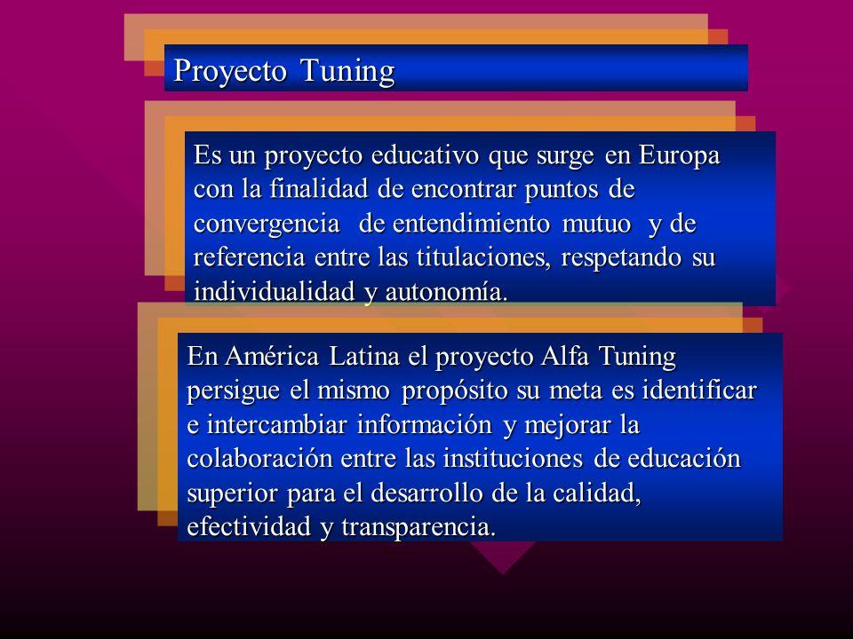 Proyecto Tuning Es un proyecto educativo que surge en Europa con la finalidad de encontrar puntos de convergencia de entendimiento mutuo y de referenc
