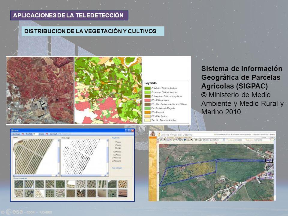 APLICACIONES DE LA TELEDETECCIÓN DISTRIBUCION DE LA VEGETACIÓN Y CULTIVOS Sistema de Información Geográfica de Parcelas Agrícolas (SIGPAC) © Ministeri