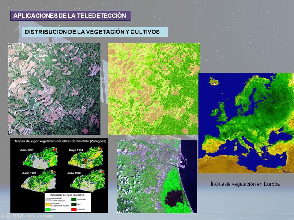 APLICACIONES DE LA TELEDETECCIÓN DISTRIBUCION DE LA VEGETACIÓN Y CULTIVOS Índice de vegetación en Europa