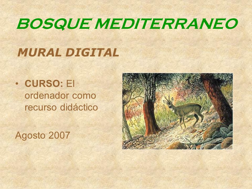 BOSQUE MEDITERRANEO MURAL DIGITAL CURSO: El ordenador como recurso didáctico Agosto 2007