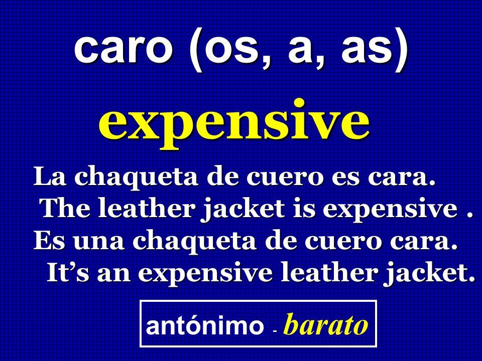 caro (os, a, as) expensive La chaqueta de cuero es cara. The leather jacket is expensive. The leather jacket is expensive. Es una chaqueta de cuero ca