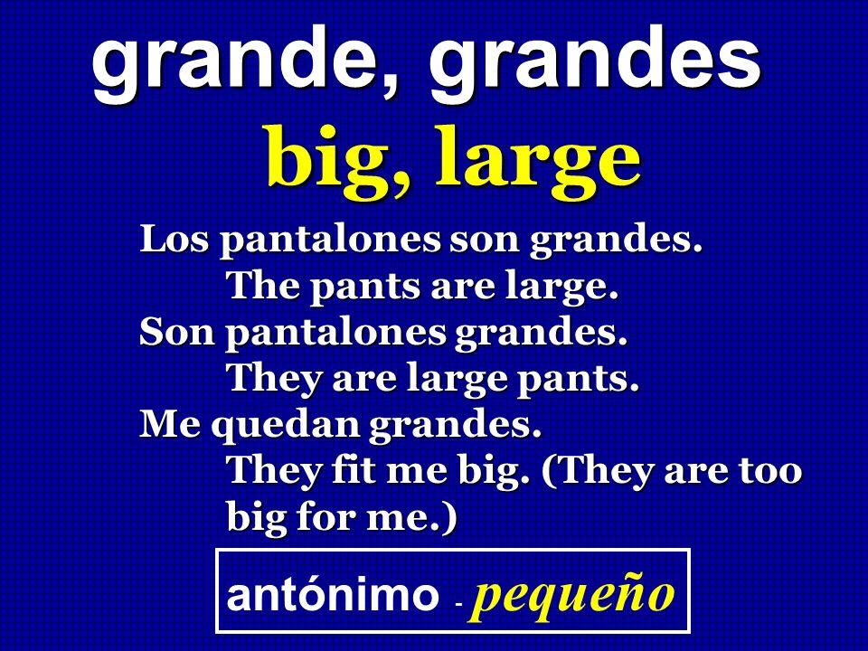 grande, grandes big, large Los pantalones son grandes. The pants are large. The pants are large. Son pantalones grandes. They are large pants. They ar