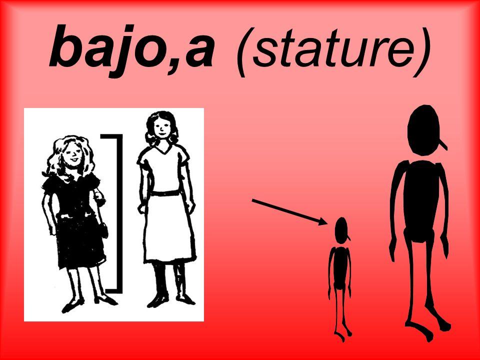 bajo,a (stature)