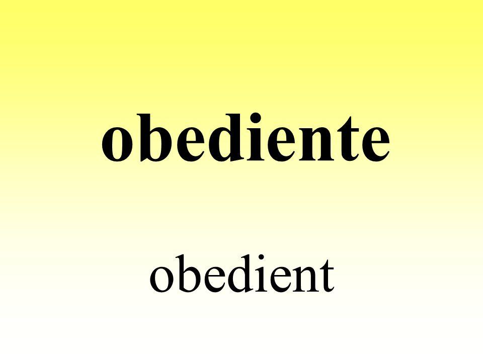 obediente obedient
