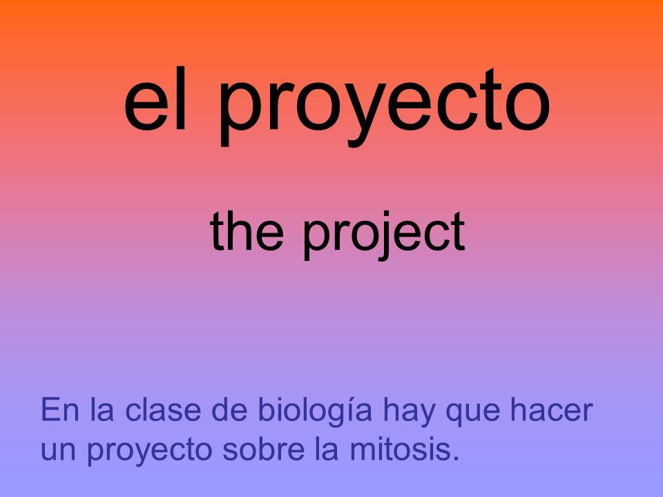 el proyecto the project En la clase de biología hay que hacer un proyecto sobre la mitosis.