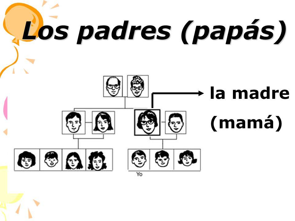 la madre (mamá) Los padres (papás)