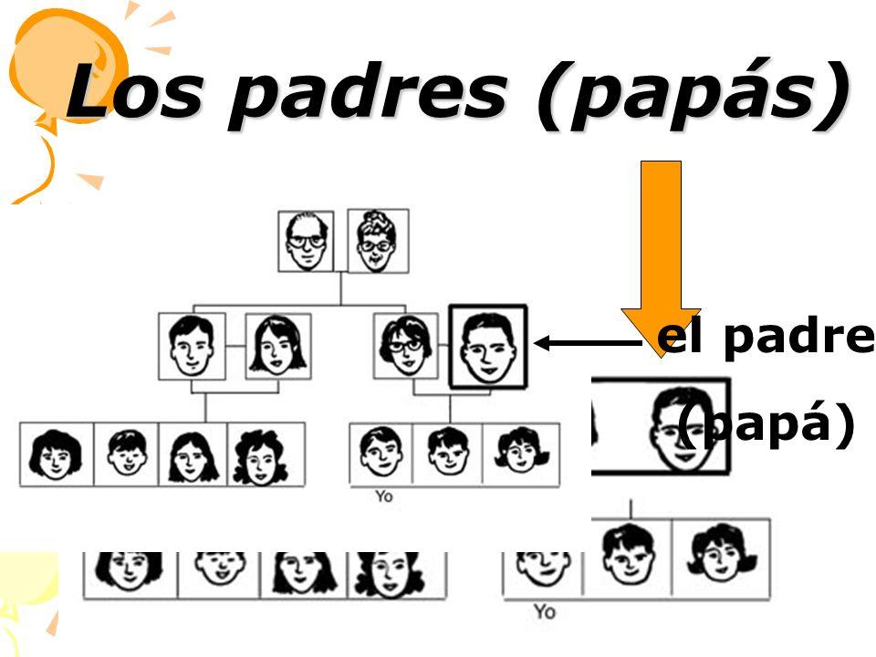 Los padres (papás) el pad re (papá)