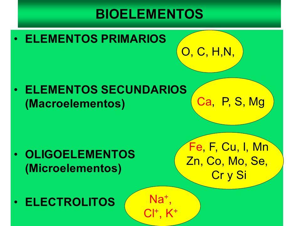 FUNCIONES DE LOS IONES POTASIO En metabolismo celular (regulación) Mantenimiento de potencial de membranas en reposo Regulación de la presión osmótica del líquido intracelular Equilibrio hidroeléctrico LA ABSORCION DE K + SE REALIZA A NIVEL INTESTINAL