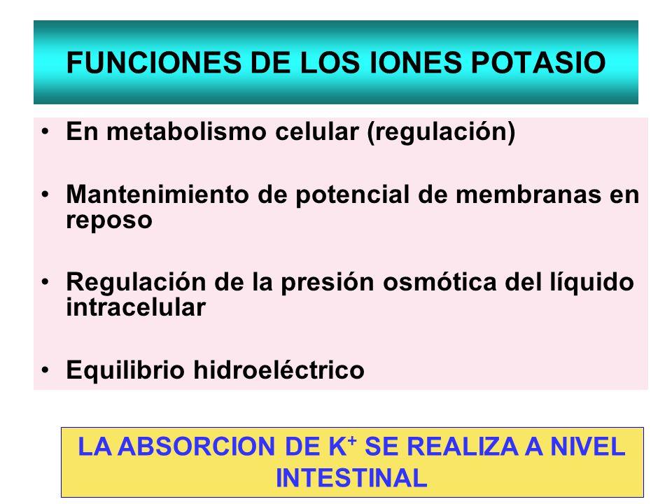 FUNCIONES DE LOS IONES POTASIO En metabolismo celular (regulación) Mantenimiento de potencial de membranas en reposo Regulación de la presión osmótica