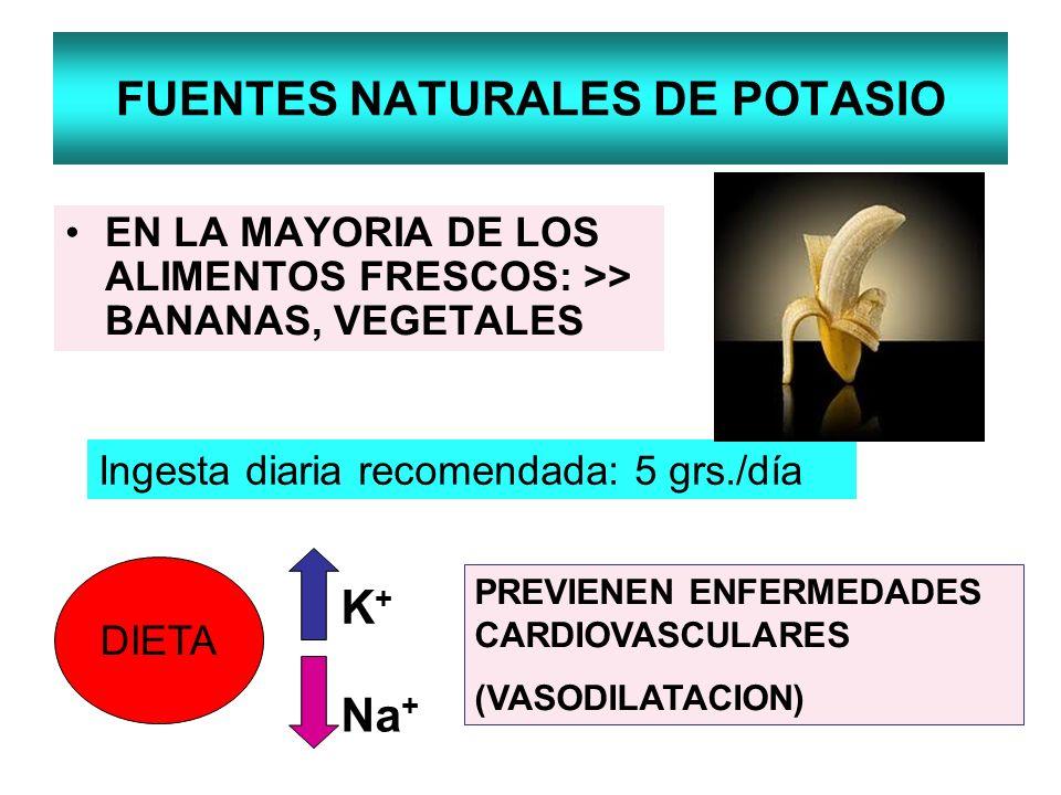 FUENTES NATURALES DE POTASIO EN LA MAYORIA DE LOS ALIMENTOS FRESCOS: >> BANANAS, VEGETALES Ingesta diaria recomendada: 5 grs./día DIETA K+K+ Na + PREV