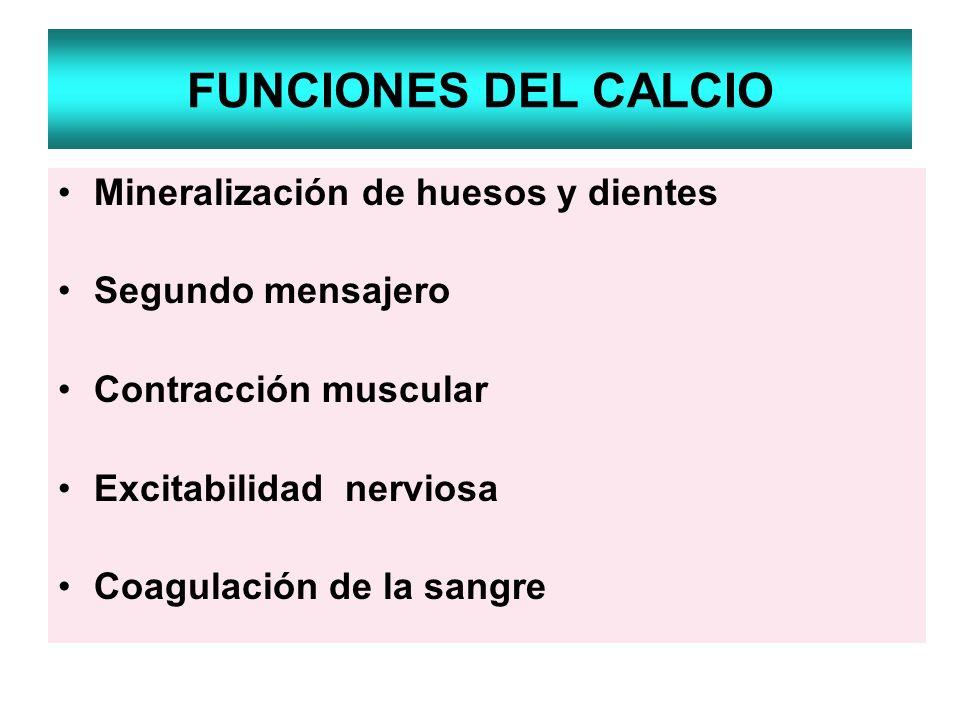 FUNCIONES DEL CALCIO Mineralización de huesos y dientes Segundo mensajero Contracción muscular Excitabilidad nerviosa Coagulación de la sangre