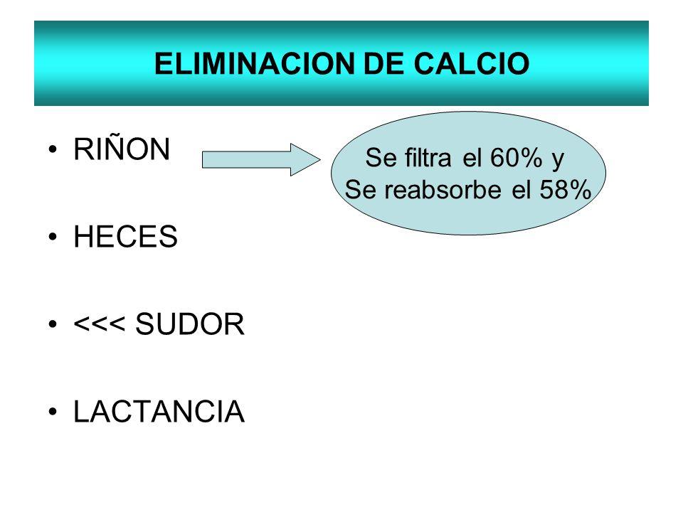 ELIMINACION DE CALCIO RIÑON HECES <<< SUDOR LACTANCIA Se filtra el 60% y Se reabsorbe el 58%