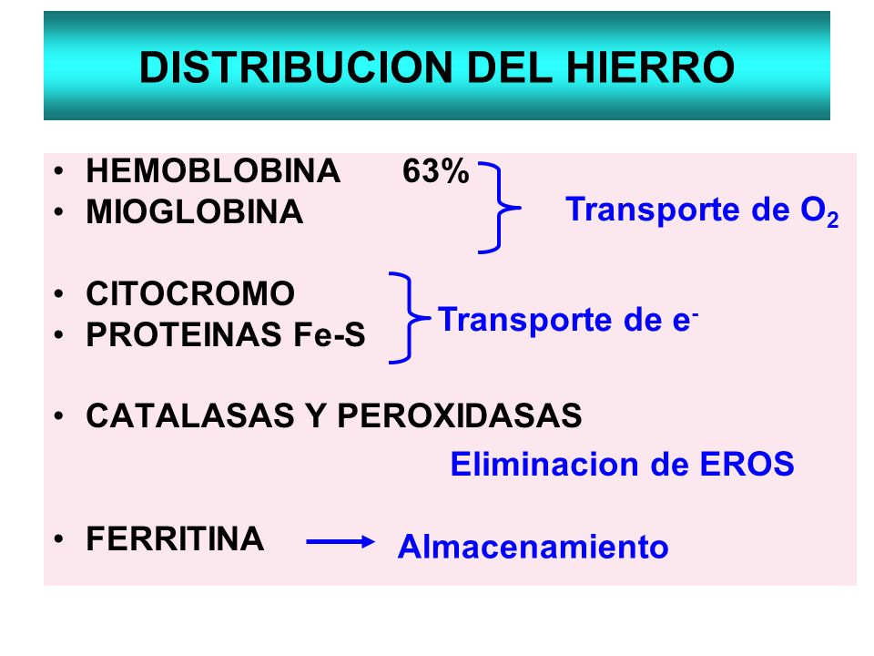 DISTRIBUCION DEL HIERRO HEMOBLOBINA63% MIOGLOBINA CITOCROMO PROTEINAS Fe-S CATALASAS Y PEROXIDASAS FERRITINA Transporte de O 2 Transporte de e - Elimi