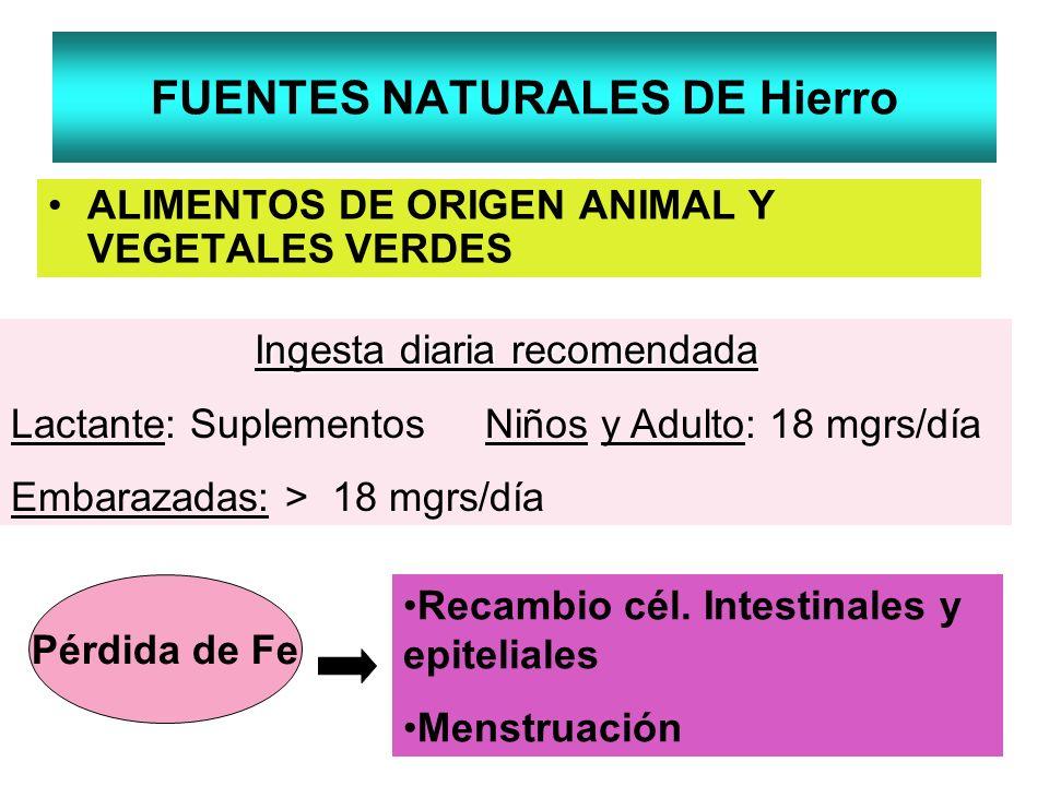 FUENTES NATURALES DE Hierro ALIMENTOS DE ORIGEN ANIMAL Y VEGETALES VERDES Ingesta diaria recomendada Lactante: Suplementos Niños y Adulto: 18 mgrs/día