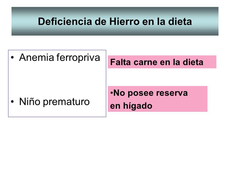 Deficiencia de Hierro en la dieta Anemia ferropriva Niño prematuro Falta carne en la dieta No posee reserva en hígado