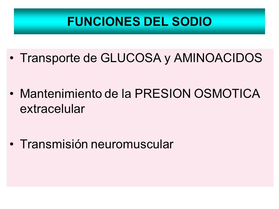 FUNCIONES DEL SODIO Transporte de GLUCOSA y AMINOACIDOS Mantenimiento de la PRESION OSMOTICA extracelular Transmisión neuromuscular