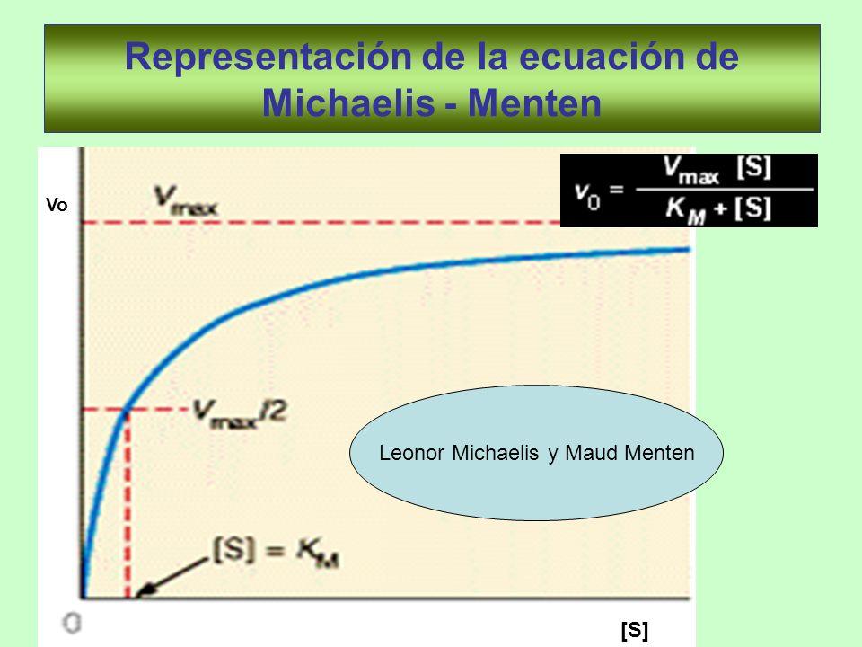 Representación de la ecuación de Michaelis - Menten Vo [S] Leonor Michaelis y Maud Menten