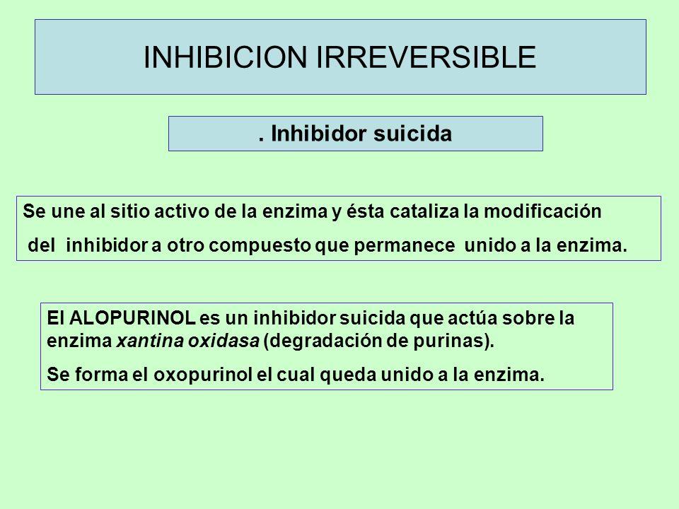 . Inhibidor suicida INHIBICION IRREVERSIBLE Se une al sitio activo de la enzima y ésta cataliza la modificación del inhibidor a otro compuesto que per