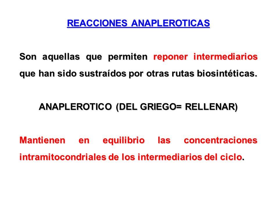 REACCIONES ANAPLEROTICAS Son aquellas que permiten reponer intermediarios que han sido sustraídos por otras rutas biosintéticas. ANAPLEROTICO (DEL GRI