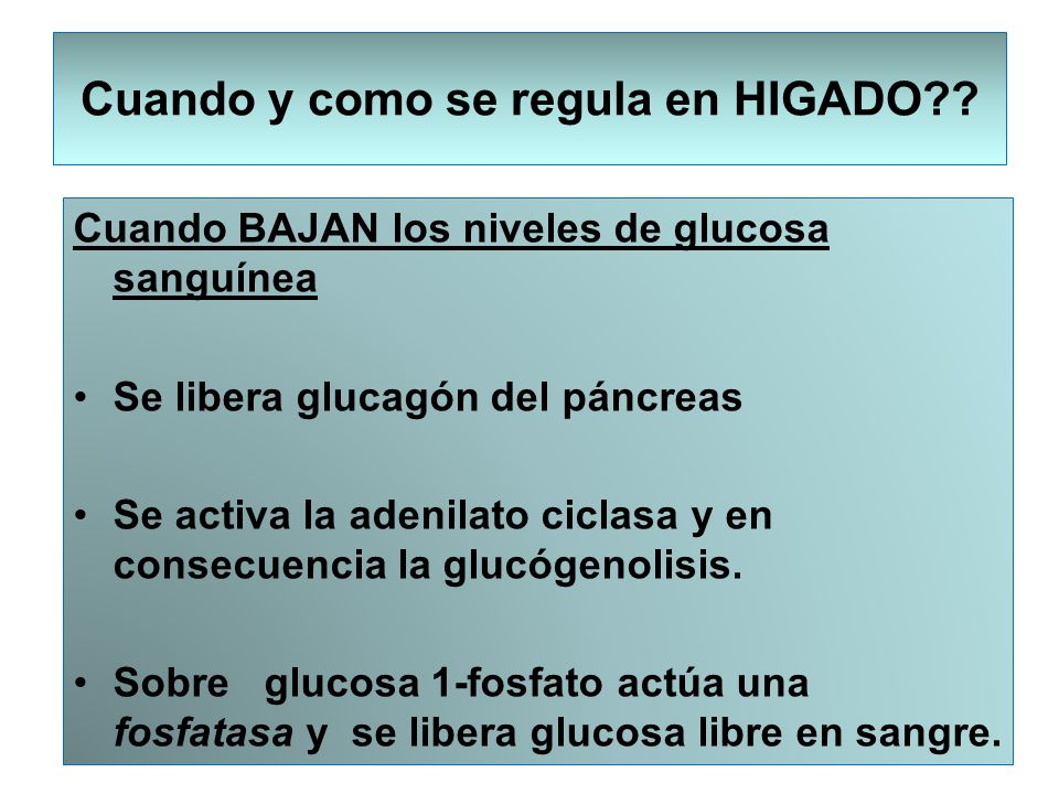 Cuando BAJAN los niveles de glucosa sanguínea Se libera glucagón del páncreas Se activa la adenilato ciclasa y en consecuencia la glucógenolisis. Sobr