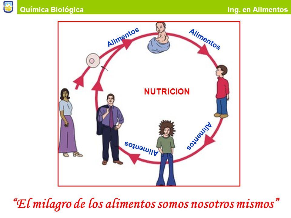 Química BiológicaIng. en Alimentos ADITIVOS QUIMICOS DE LOS ALIMENTOS