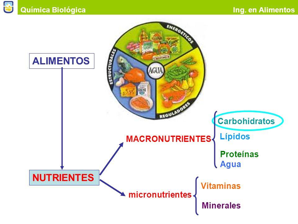 Química BiológicaIng. en Alimentos