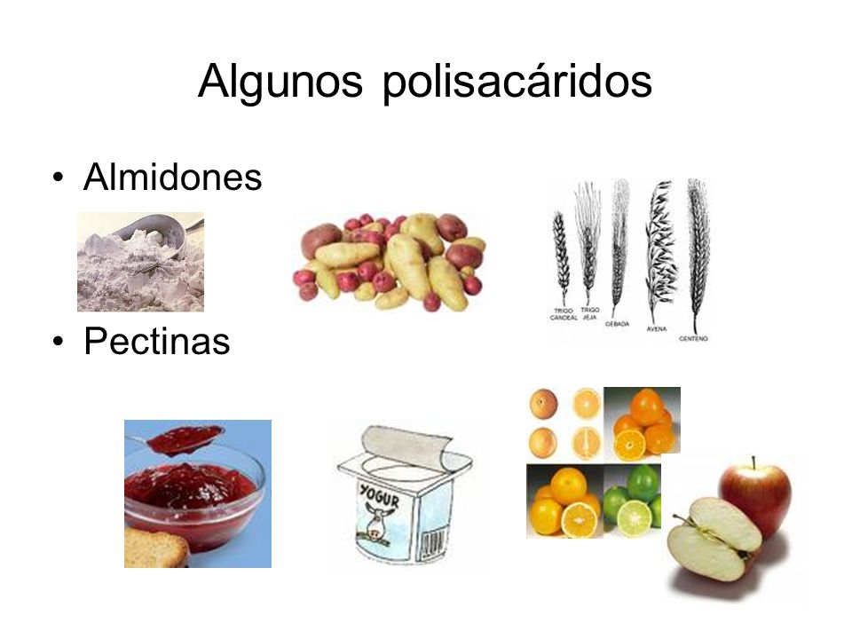 Biológicamente los glúcidos cumplen con dos funciones importantes: celulosa - Estructural: como la celulosa, en el caso de las plantas, que constituye los tallos, hojas y frutos.
