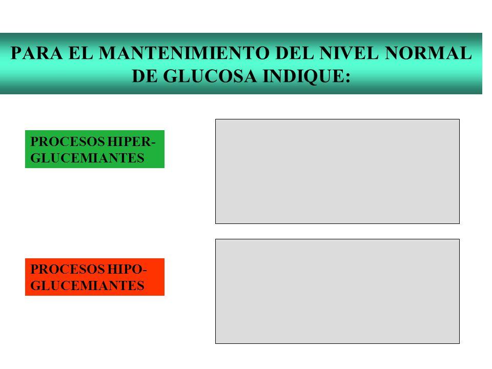 PARA EL MANTENIMIENTO DEL NIVEL NORMAL DE GLUCOSA INDIQUE: PROCESOS HIPER- GLUCEMIANTES PROCESOS HIPO- GLUCEMIANTES