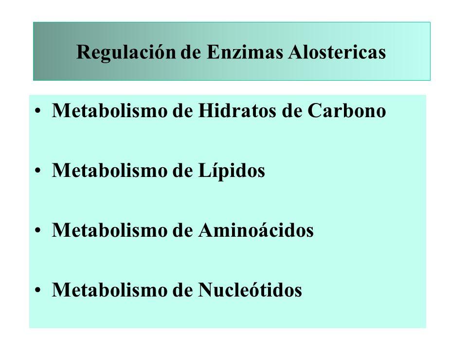 Regulación de Enzimas Alostericas Metabolismo de Hidratos de Carbono Metabolismo de Lípidos Metabolismo de Aminoácidos Metabolismo de Nucleótidos