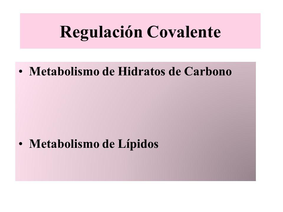 Regulación Covalente Metabolismo de Hidratos de Carbono Metabolismo de Lípidos