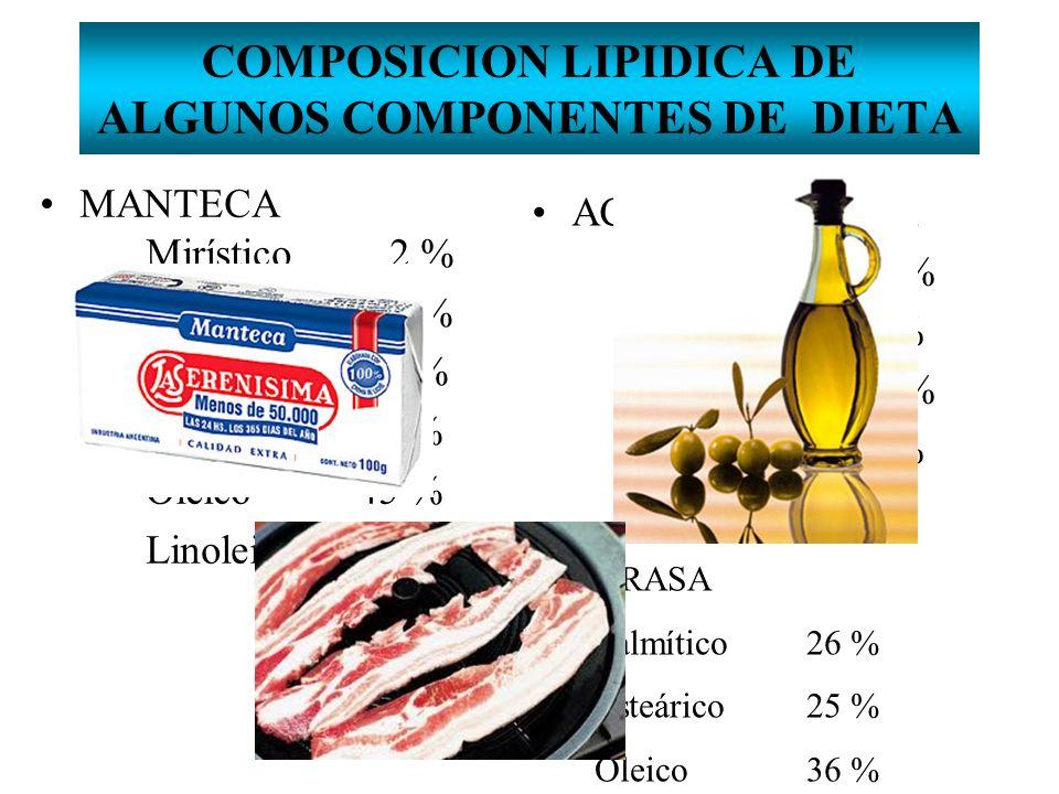 COMPOSICION LIPIDICA DE ALGUNOS COMPONENTES DE DIETA MANTECA Mirístico 2 % Palmítico 25 % Palmitoleico 3 % Esteárico14 % Oleico45 % Linoleico 9 % ACEI