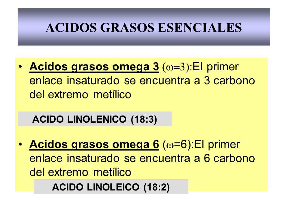 Acidos grasos omega 3 ( El primer enlace insaturado se encuentra a 3 carbono del extremo metílico Acidos grasos omega 6 ( =6):El primer enlace insatur