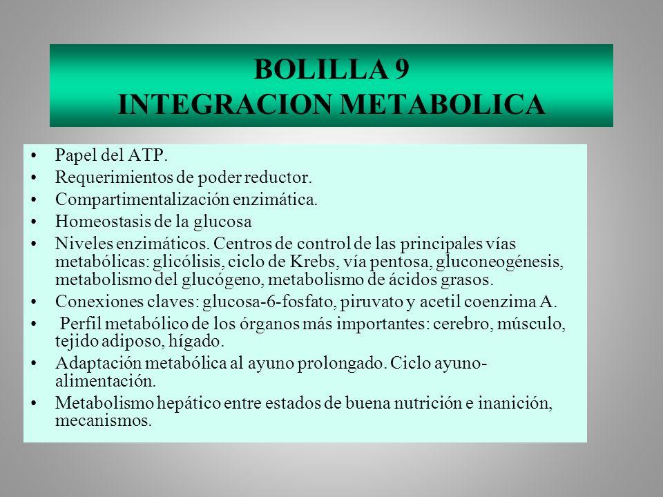 BOLILLA 9 INTEGRACION METABOLICA Papel del ATP. Requerimientos de poder reductor. Compartimentalización enzimática. Homeostasis de la glucosa Niveles
