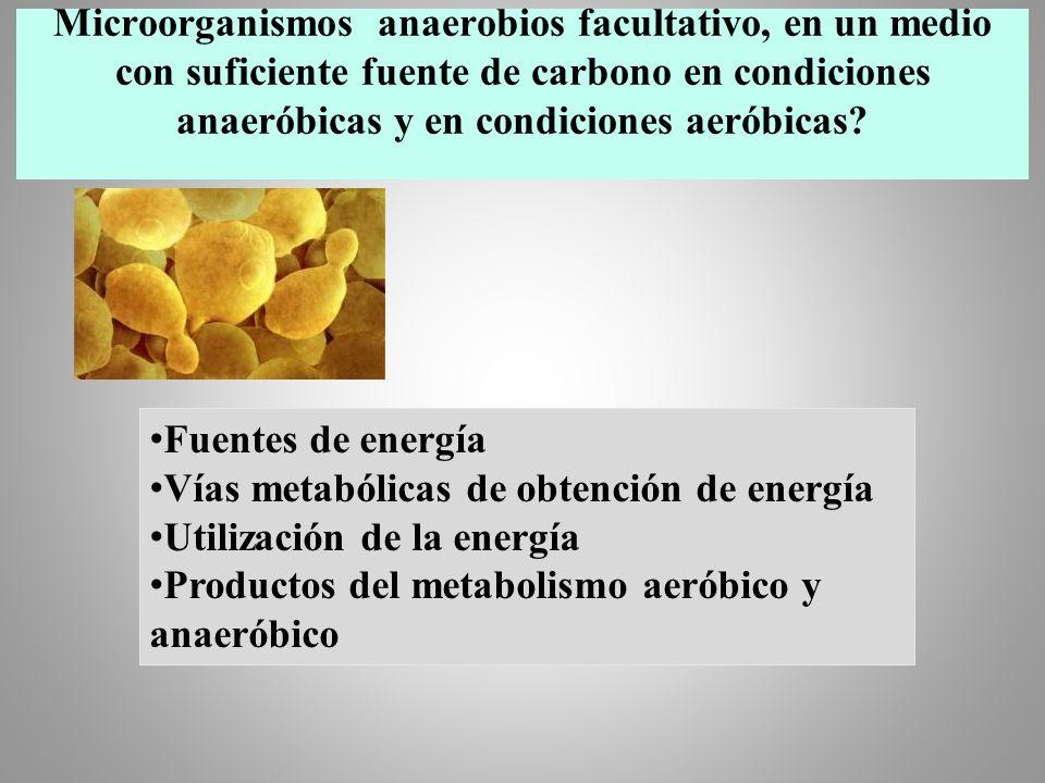 Microorganismos anaerobios facultativo, en un medio con suficiente fuente de carbono en condiciones anaeróbicas y en condiciones aeróbicas? Fuentes de