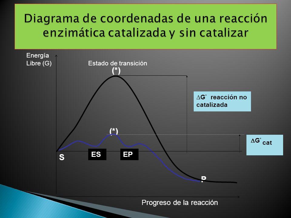 P (*) G * cat G * reacción no catalizada S Energía Libre (G) Estado de transición Progreso de la reacción (*) ESEP