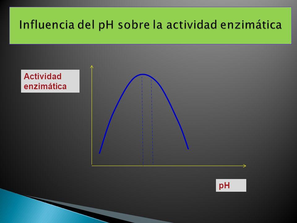 Actividad enzimática pH