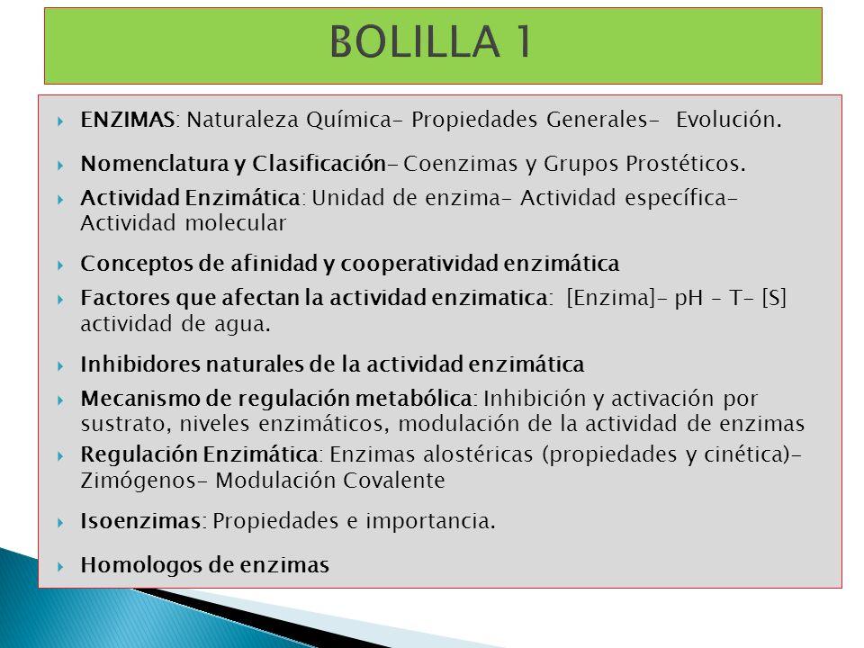 ENZIMAS: Naturaleza Química- Propiedades Generales- Evolución. Nomenclatura y Clasificación- Coenzimas y Grupos Prostéticos. Actividad Enzimática: Uni