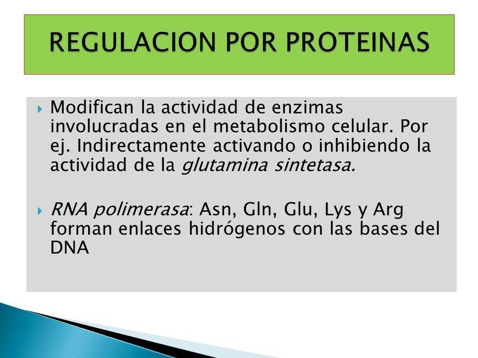 Modifican la actividad de enzimas involucradas en el metabolismo celular. Por ej. Indirectamente activando o inhibiendo la actividad de la glutamina s